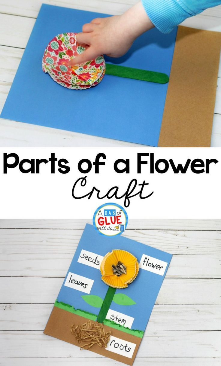 Parts Of A Flower Craft Teaching Preschool Science Lesson Plans