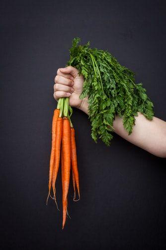 How To Grow Carrots Complete Garden Season Growing Guide 400 x 300