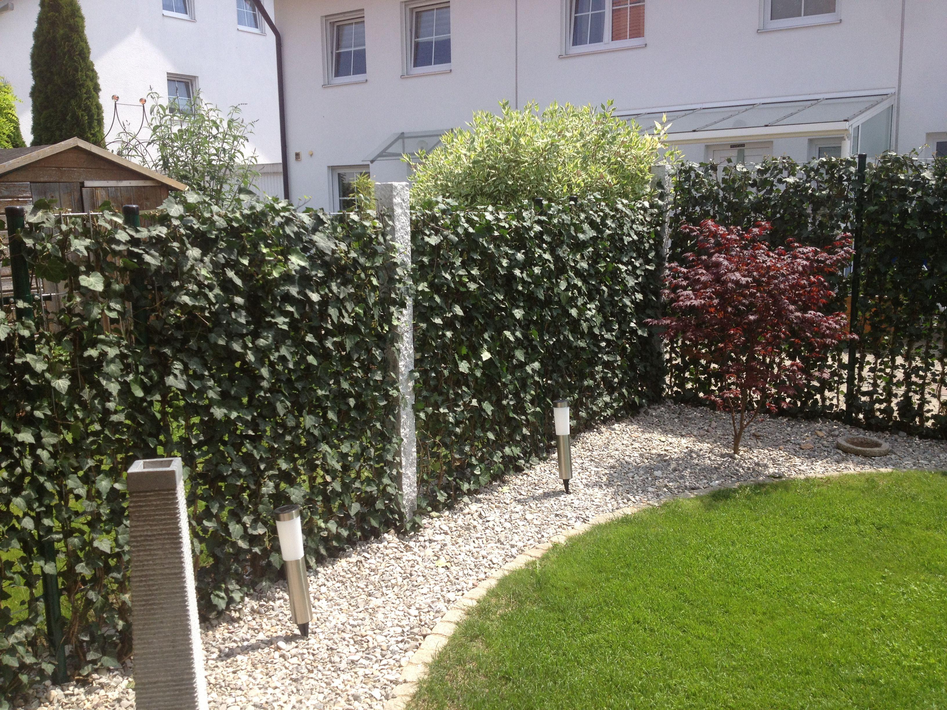 Baustelle von Garten Bronder Hecke am laufenden Meter Mobilane