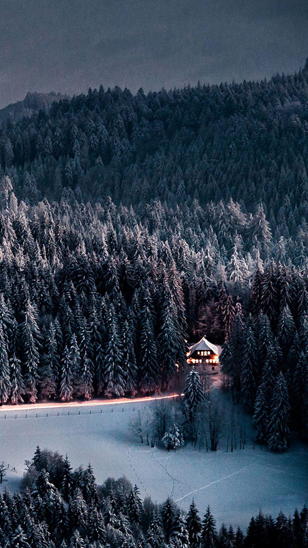 Winter Snow Forest Chalet Retreat ...