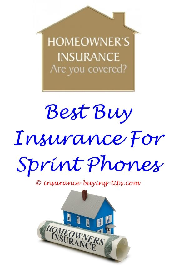 Event Insurance Quote Glamorous Aaa Quote Car Insurance  Buy Health Insurance Term Life Insurance