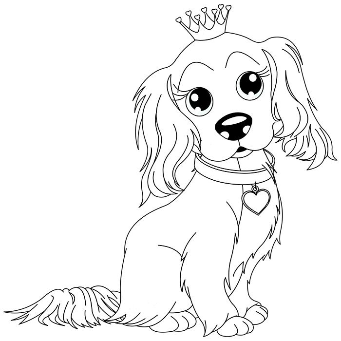 Coloriage chien king charles a imprimer gratuit motifs chien coloriage dessin et dessin a - Coloriage chiot ...