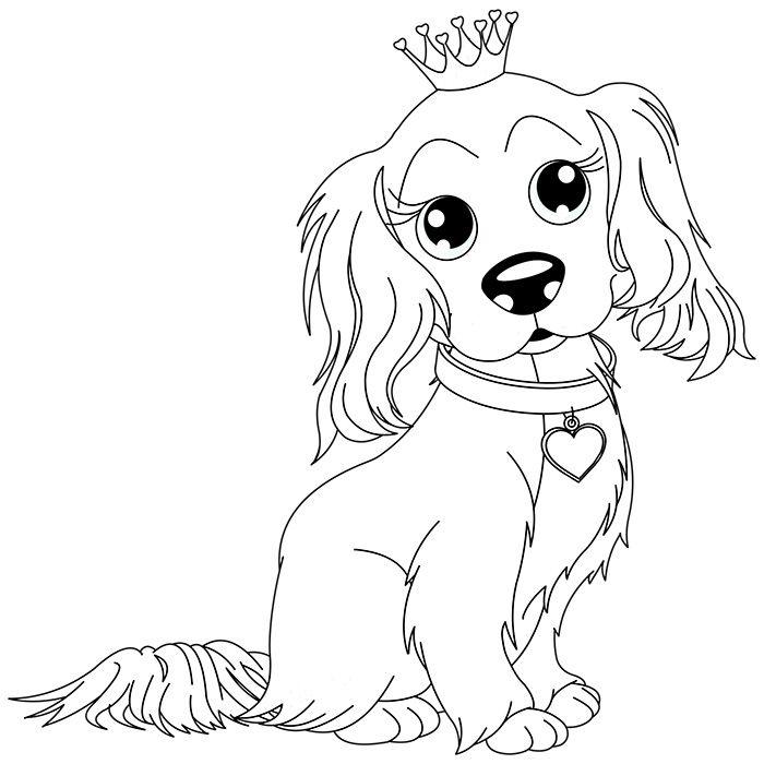 Coloriage chien king charles a imprimer gratuit motifs pinterest coloriage gratuit et l a - Dessin a faire sois meme ...