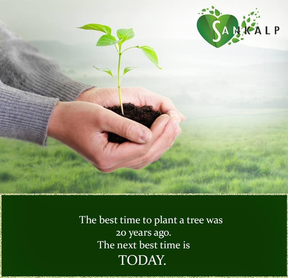 #SHRI Group #Plant #trees and #save the #EARTH