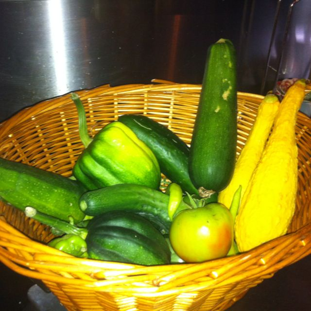 All of these came right out of my backyard garden! Gonna use them to make some yummy recipes! <3 Remmi :)