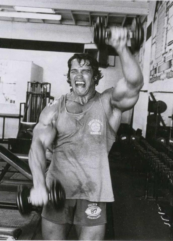 Legends Of Bodybuilding Dvds Arnold Schwarzenegger Bodybuilding Schwarzenegger Bodybuilding Arnold Schwarzenegger
