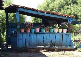 Outdoor Kitchen San Jose De La Torre Michoacan Outdoor Kitchen Outdoor Kitchen Design Outdoor Kitchen Decor