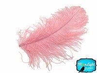 "2 Pieces - 18- 24"" LIGHT PINK Large Wing Plumes Feathers"