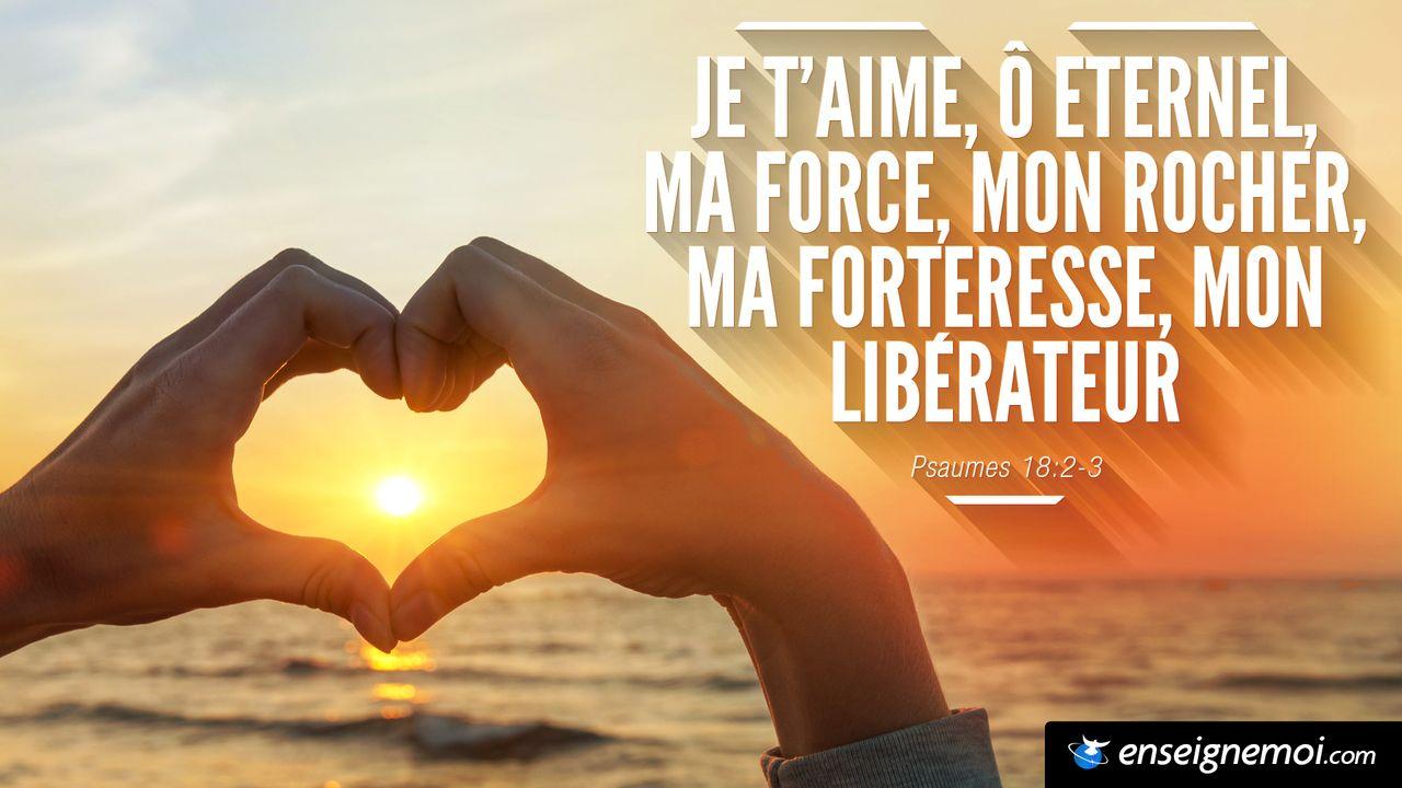 Super Psaume 18:2 Eternel, mon rocher, ma forteresse, mon libérateur  QT86