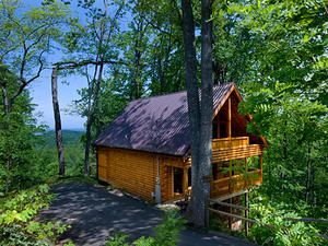Bear In The Trees Is A Gatlinburg The Spur Cabin Vacation Rental In Smoky  Mountains TN. This Gatlinburg The Spur Rental Is Perfect For Your Next The  Spur ...