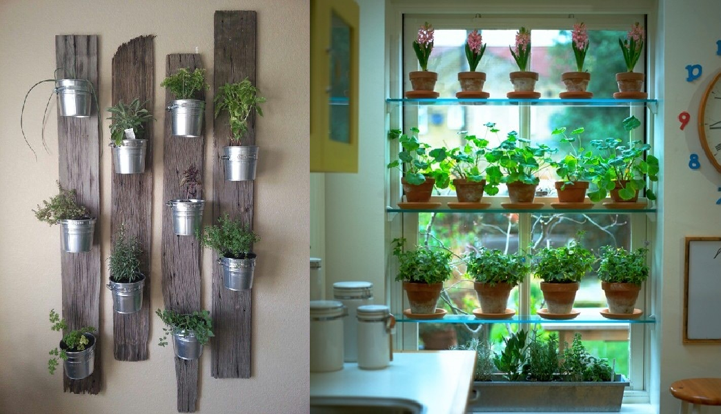 Indoor Herb Garden Picture indoor herb garden Pinterest