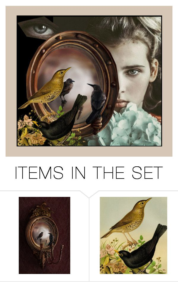 """Double Vision"" by dorataya ❤ liked on Polyvore featuring art, contest, birds, lastchance and surreal"
