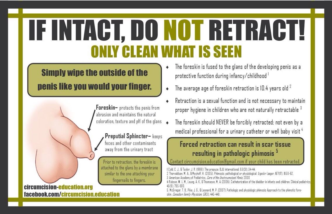 Intact Don T Retract Circumcision Care Mindful Parenting