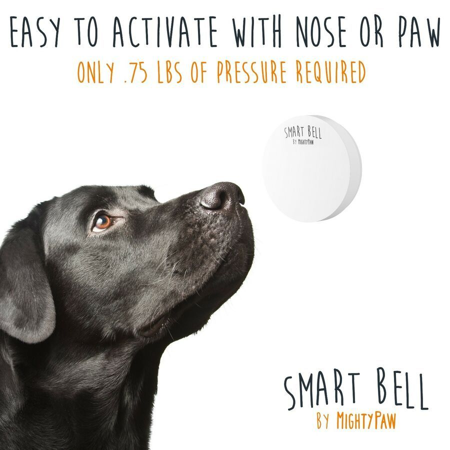Mighty Paw Smart Bell 2 0 Ad Paw Mighty Smart Dog Training Dog