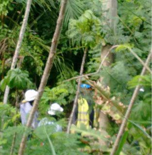 Habitantes de Palomino bloquean la Troncal del Caribe: 36 horas sin energía :: Emisora Rosita Estéreo « Hoy es Noticia - Rosita Estéreo