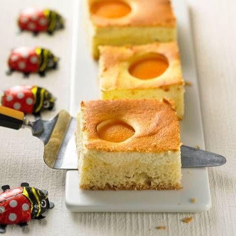 Aprikosen Kasekuchen Rezept Backen Cake Cheesecakes Und Muffin