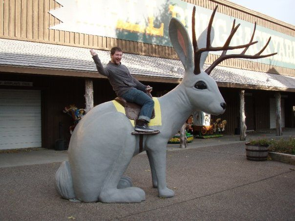 on jackalopes mythical beasts wall drug jackalope on wall drug south dakota id=33454