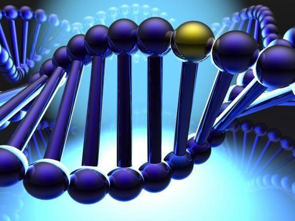 living your blueprint Business Tips Pinterest - new blueprint gene expression
