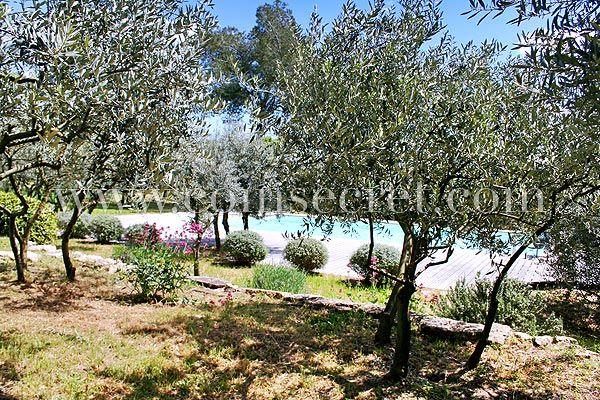Location dune villa de vacances avec piscine privée à Cabrières - location vacances provence avec piscine