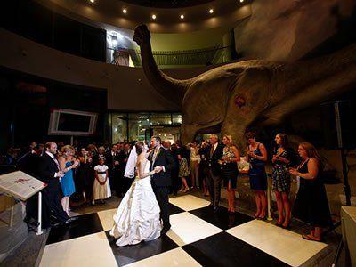North Carolina Museum Of Natural Sciences Raleigh Weddings Durham