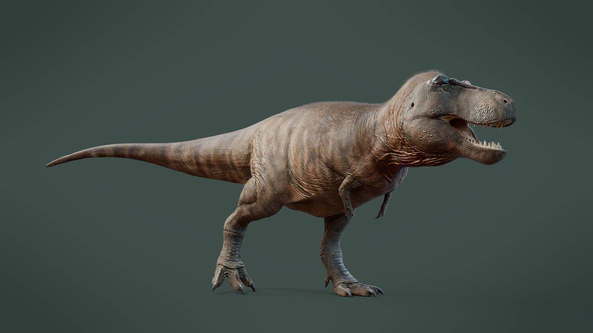 Image by Shutterstock Allosaurus Walking Men/'s Tee