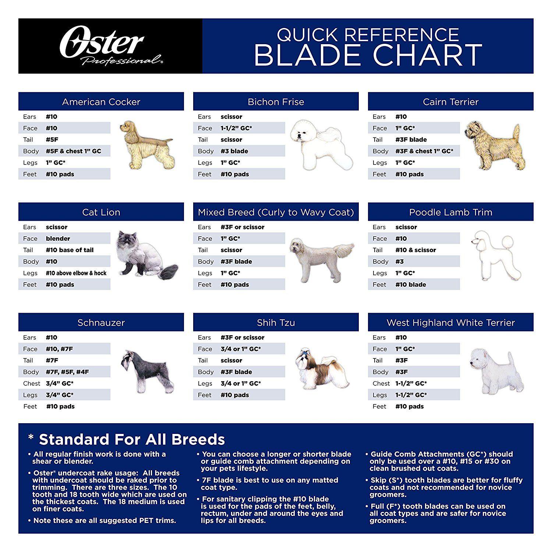 Www Amazon Com Oster Grooming Clipper Detachable Cryogen X Dp B000lrn31k Ref Sr 1 2 Rps 1 Ie Utf8 Dog Grooming Clippers Dog Grooming Styles Schnauzer Grooming