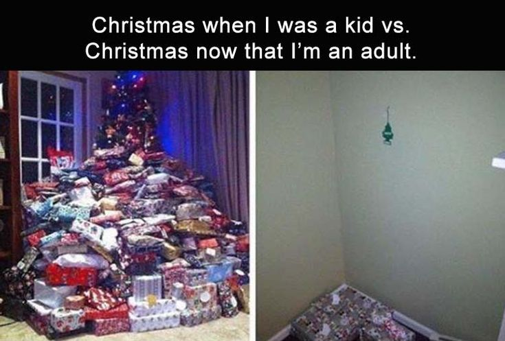 Afternoon Funny Picture Dump 35 Pics Http Ibeebz Com With Images Christmas Memes Funny Pictures Funny Posts