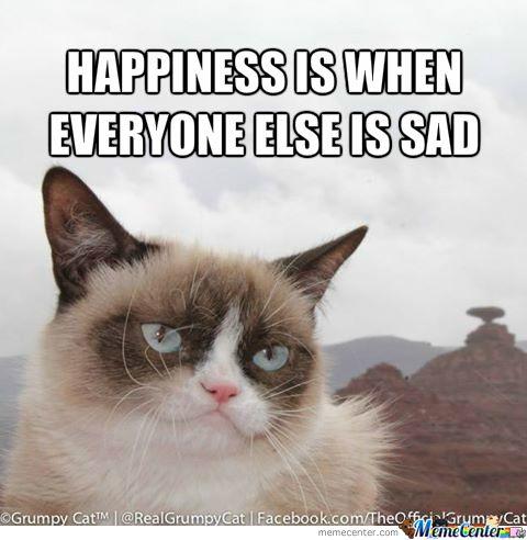 Grumpy Cat Smiling Grumpy Cat Meme Grumpy Cat Grumpy Cat Humor