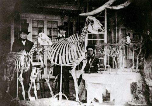 Edgar Allan Poe lurks at right in this early daguerreotype of the Academy of Natural Sciences in Philadelphia, 1842 or 1843