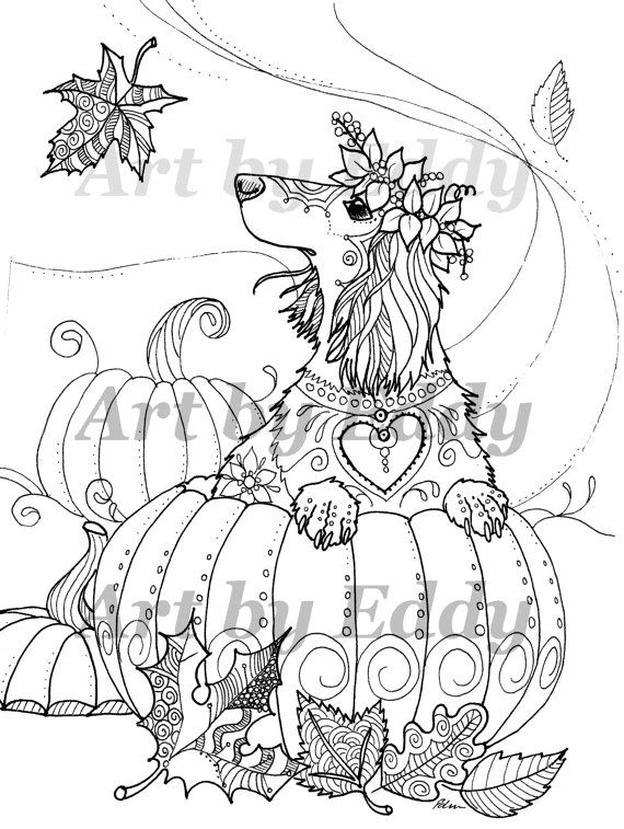 Art of Dachshund Single Coloring Page - Harvest Doxie   Coloring ...