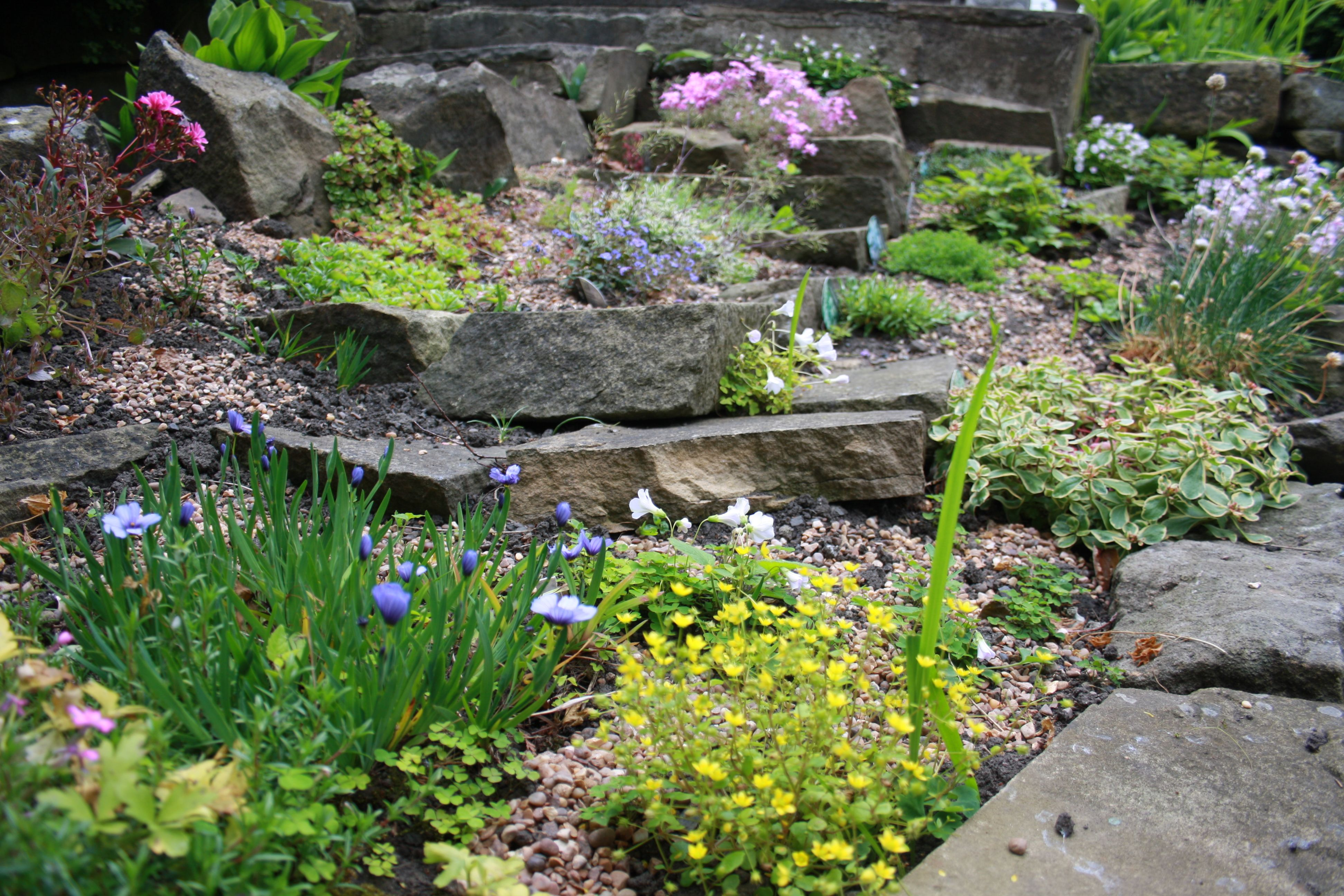 tips for creating a rock garden feature. #rockgarden #alpines #stone #natural #miniature