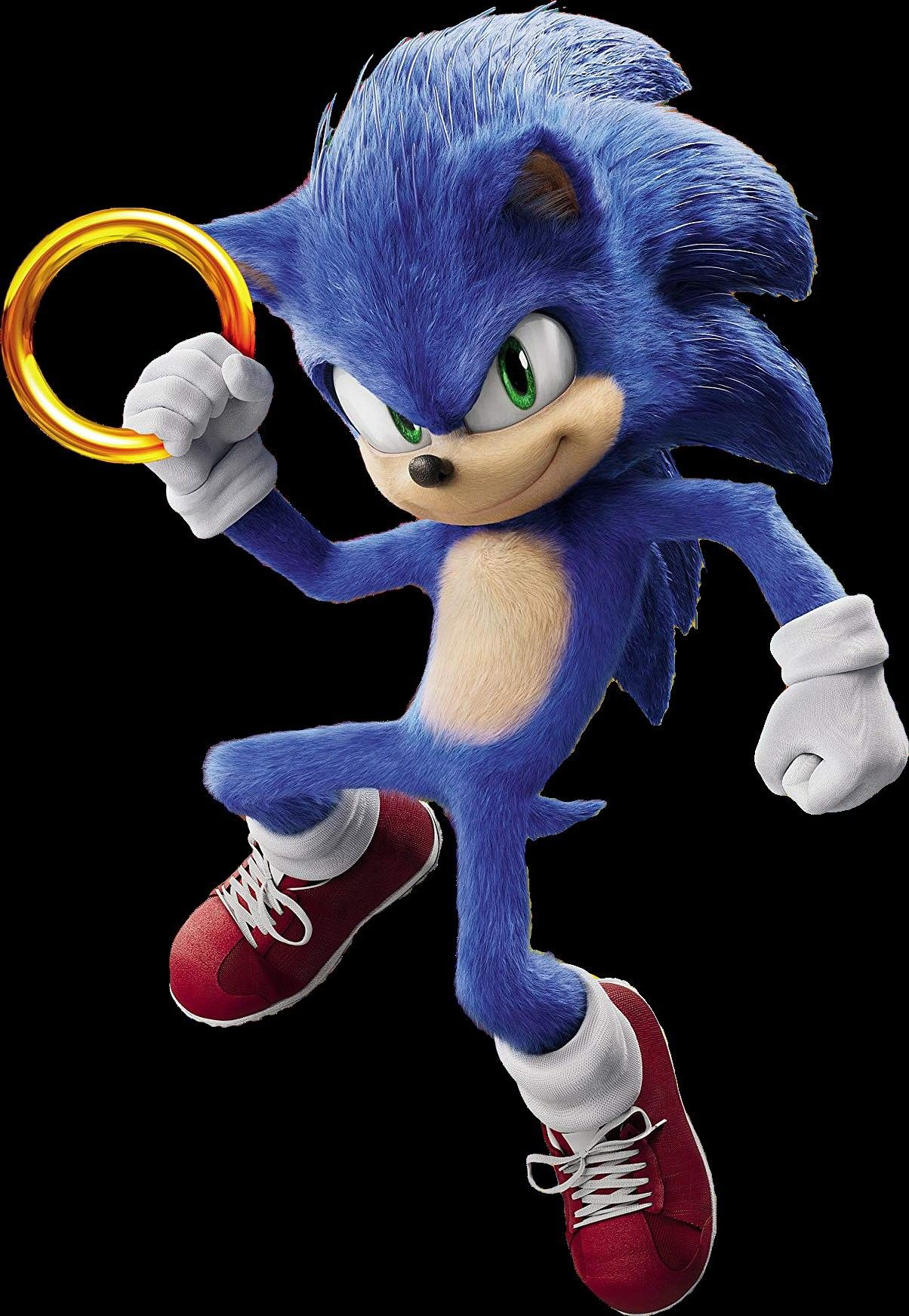 Pin By Anake On Things I Like And Enjoy Or Find Cool In 2020 Sonic Heroes Sonic The Hedgehog Sonic
