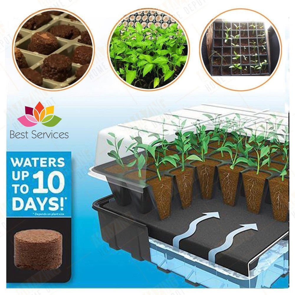 Seed Starter Kit Tray 36 Cell Pellet Greenhouse Dome Self Watering Plant Pot Box Guaranteed To Grow Bigger Seed Starter Seed Starter Kit Self Watering Plants