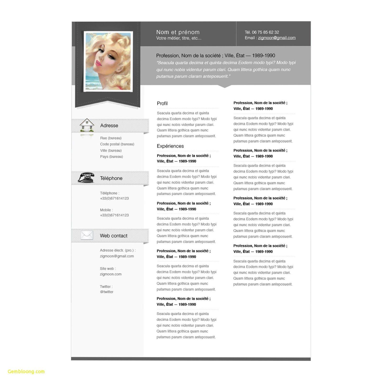 Apple Resume Template Apple Resume Templates For Pages Apple Resume Templates Free Apple Resume Te Resume Design Template Best Resume Template Resume Templates