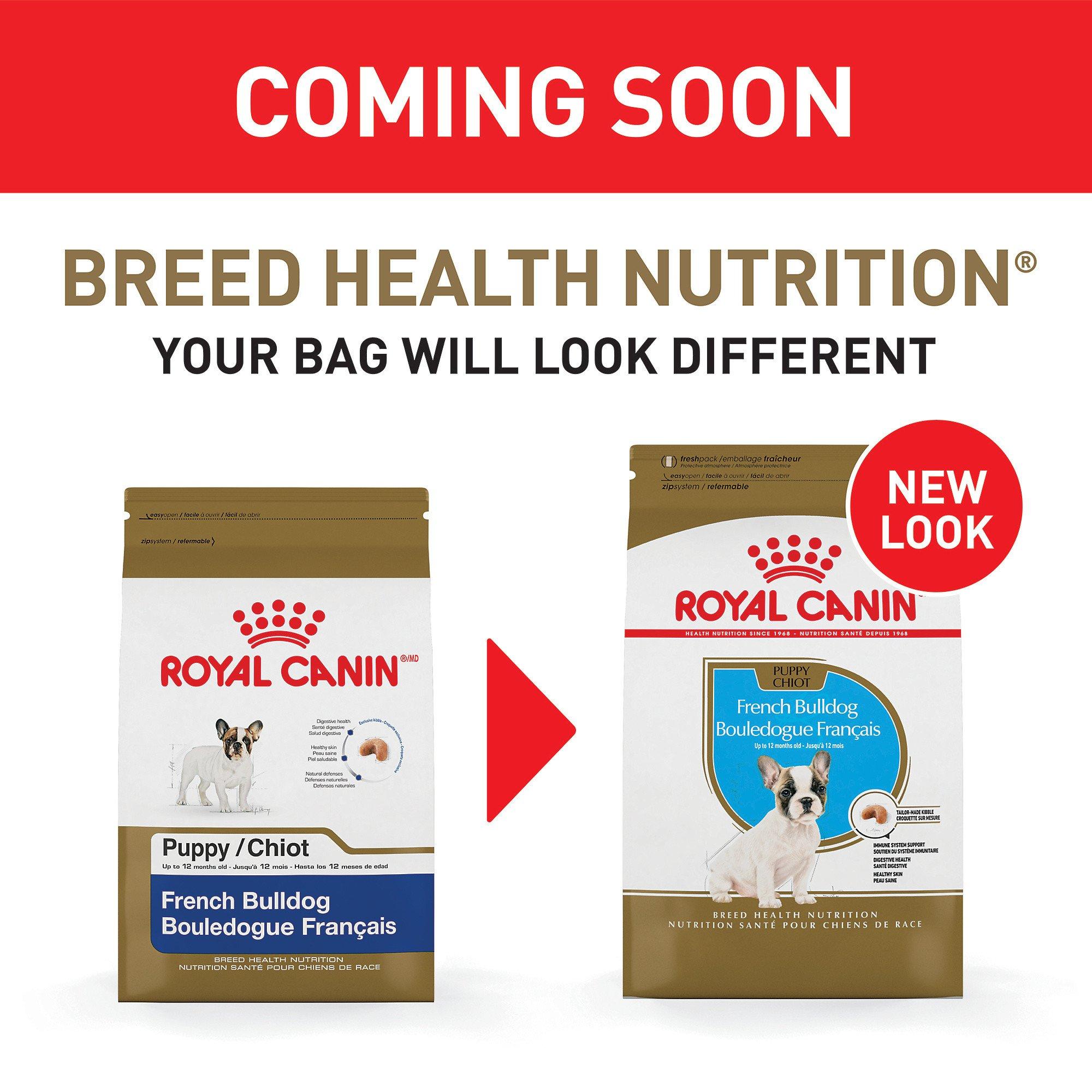 Royal Canin Breed Health Nutrition French Bulldog Dry Puppy Food
