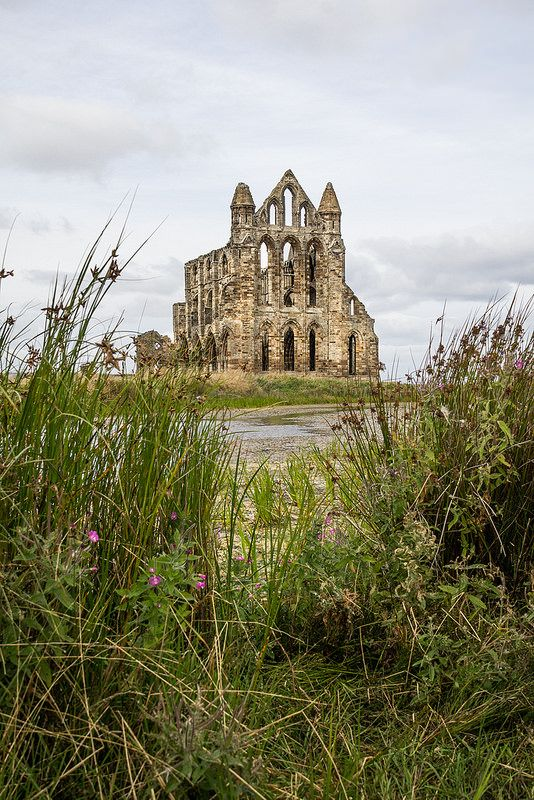 Bullrush View, Whitby Abbey