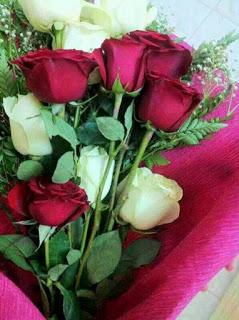 صور ورود 2020 اجمل صور زهور احلى صور ورود جميلة زينه Flower Images Rose Flowers