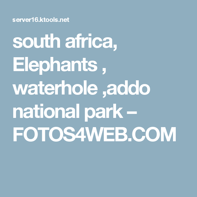 south africa, Elephants , waterhole ,addo national park – FOTOS4WEB.COM
