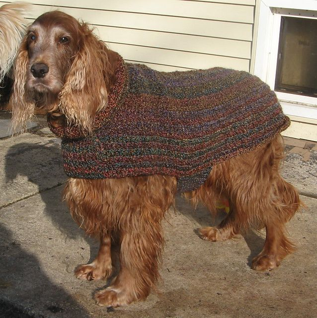 Ravelry: deafsetter\'s easy large dog sweater | Crochet~Pets ...