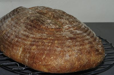 my discovery of Bread: Sprouted Wheat Sourdough