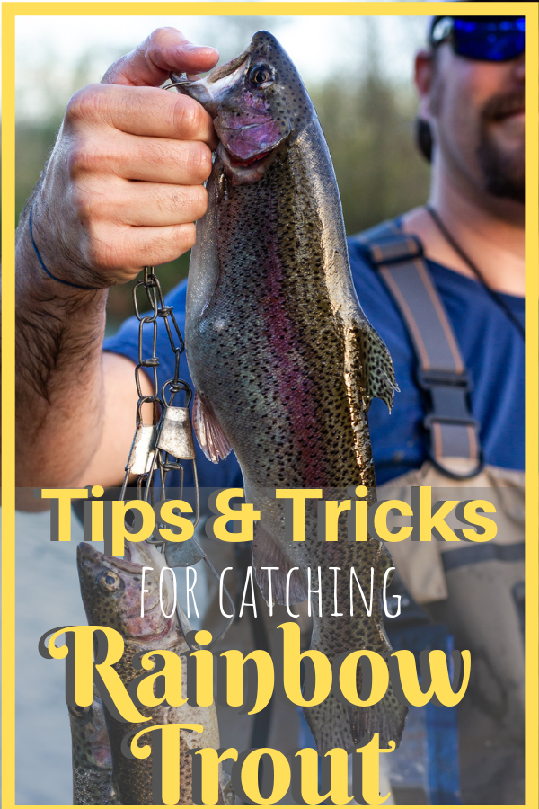Rainbow trout fishing 101: All the fishing supplies needed to know