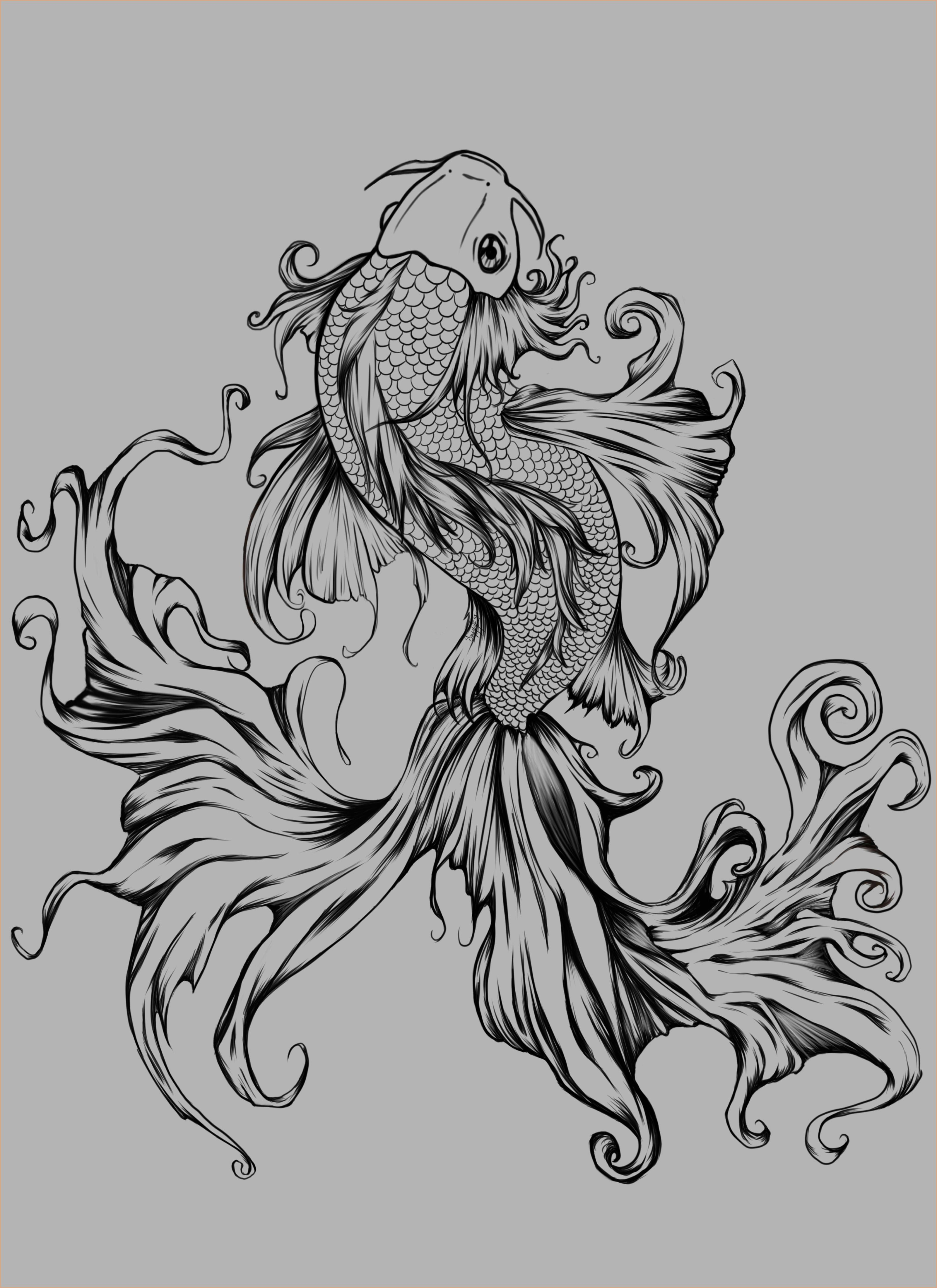 Black And White Beta Fish Tattoo Google Search Koi Fish Tattoo Fish Tattoos Tattoos
