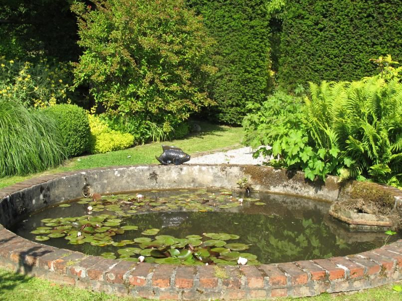 Bassin En Pierre Piscine En 2020 Bassin De Jardin Plan Jardin Jardins