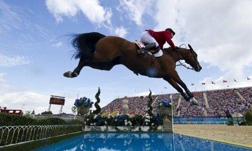 Cheval qui saute au dessus d 39 un obstacle d 39 eau horse pinterest cheval qui saute et eaux - Frison saut d obstacle ...