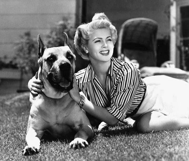 Lana Turner With Her Great Dane Billy Girl And Dog Lana Turner