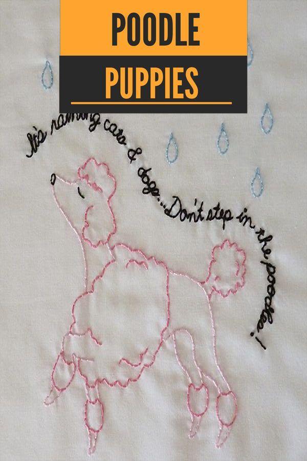 Cool Toy Poodle Watercolor #standardpoodlegrey #poodlepuppy