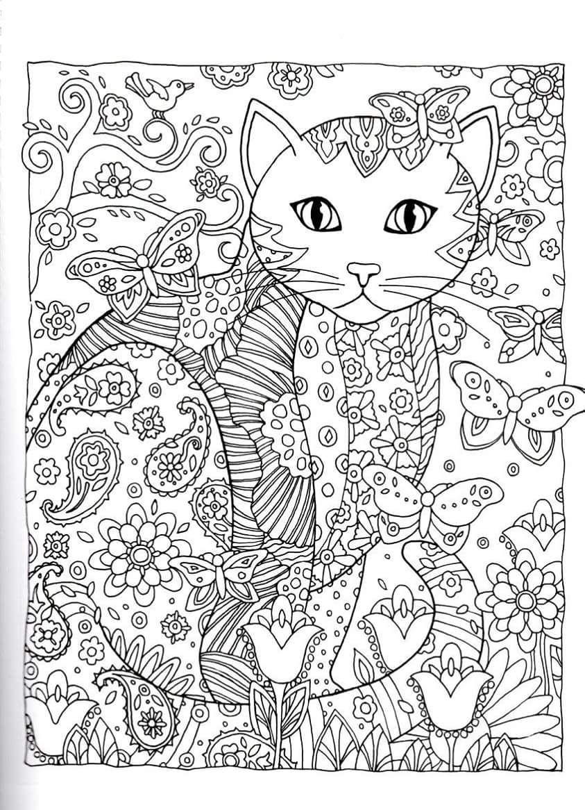Gatos para Colorir | Páginas para Colorir - Adultos - Coloring Pages ...