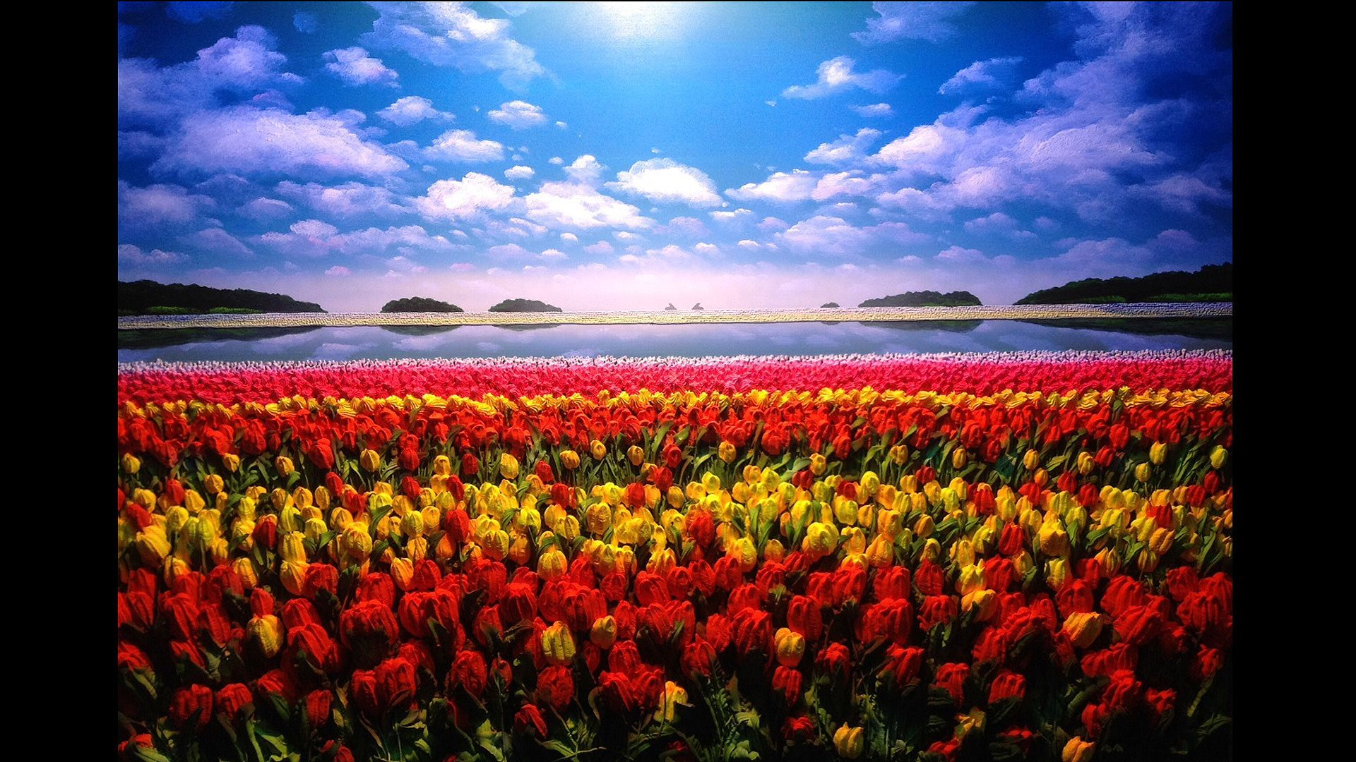 massimo meda tulipano   Dipinti, Arte e Artisti