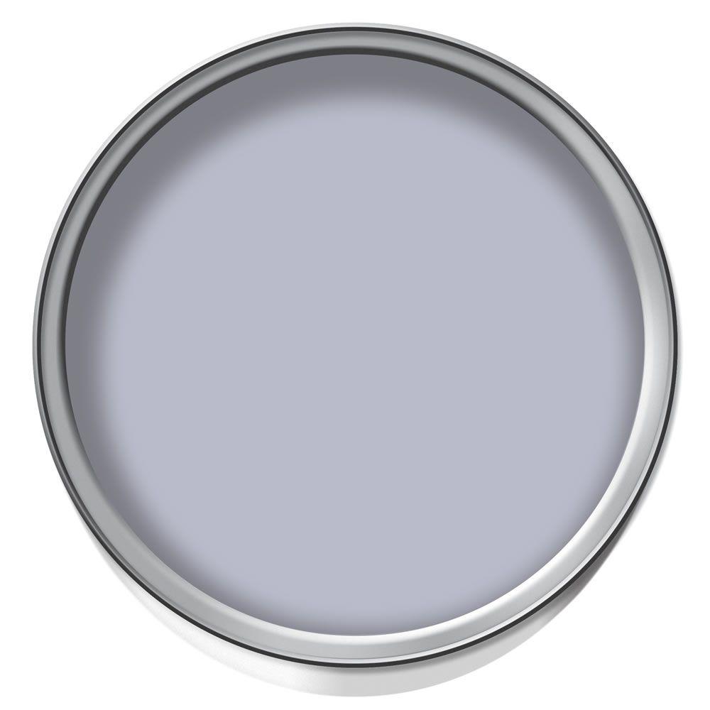 Matt Lacquer Emulsion Paint