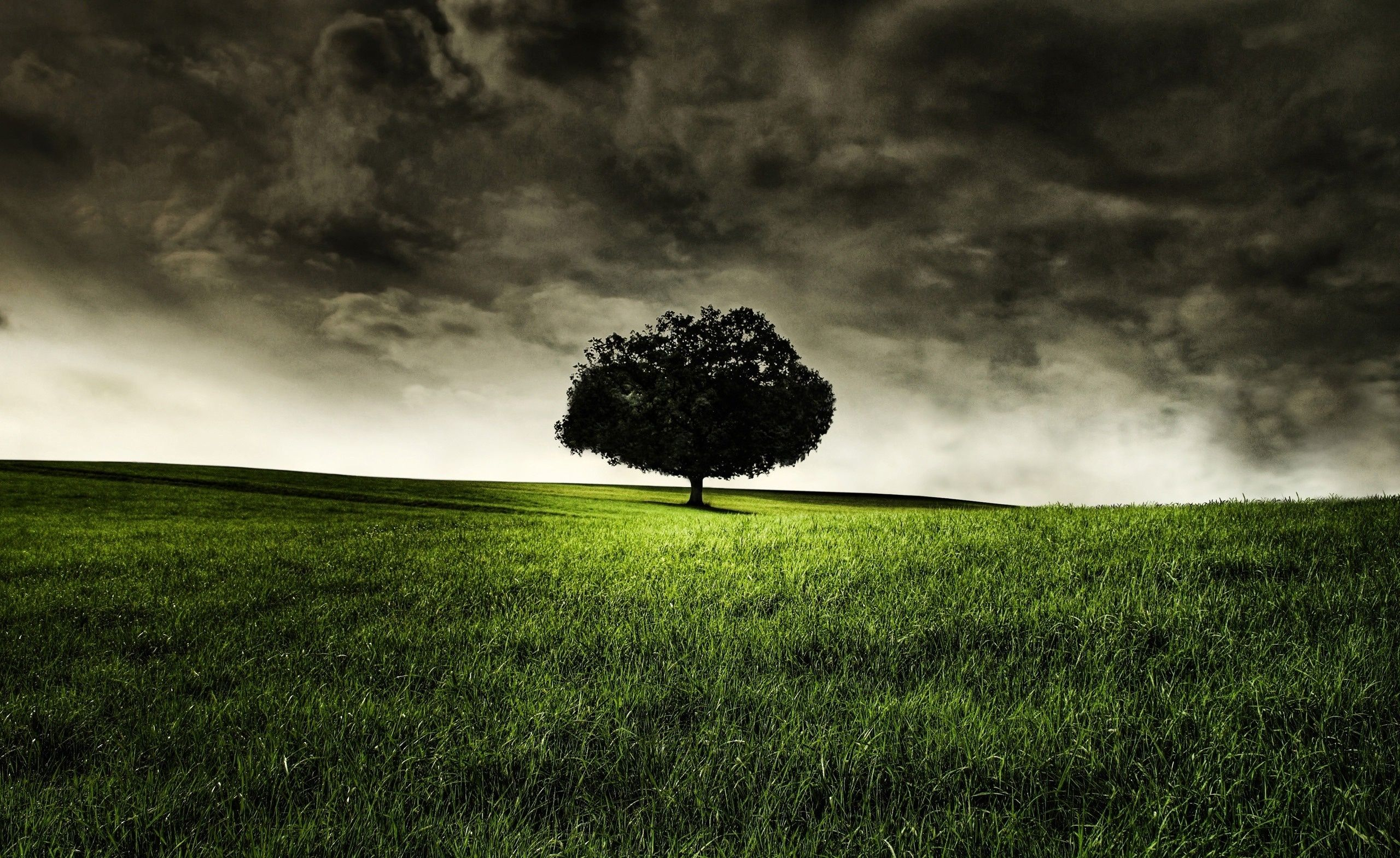 Hd dark nature backgrounds